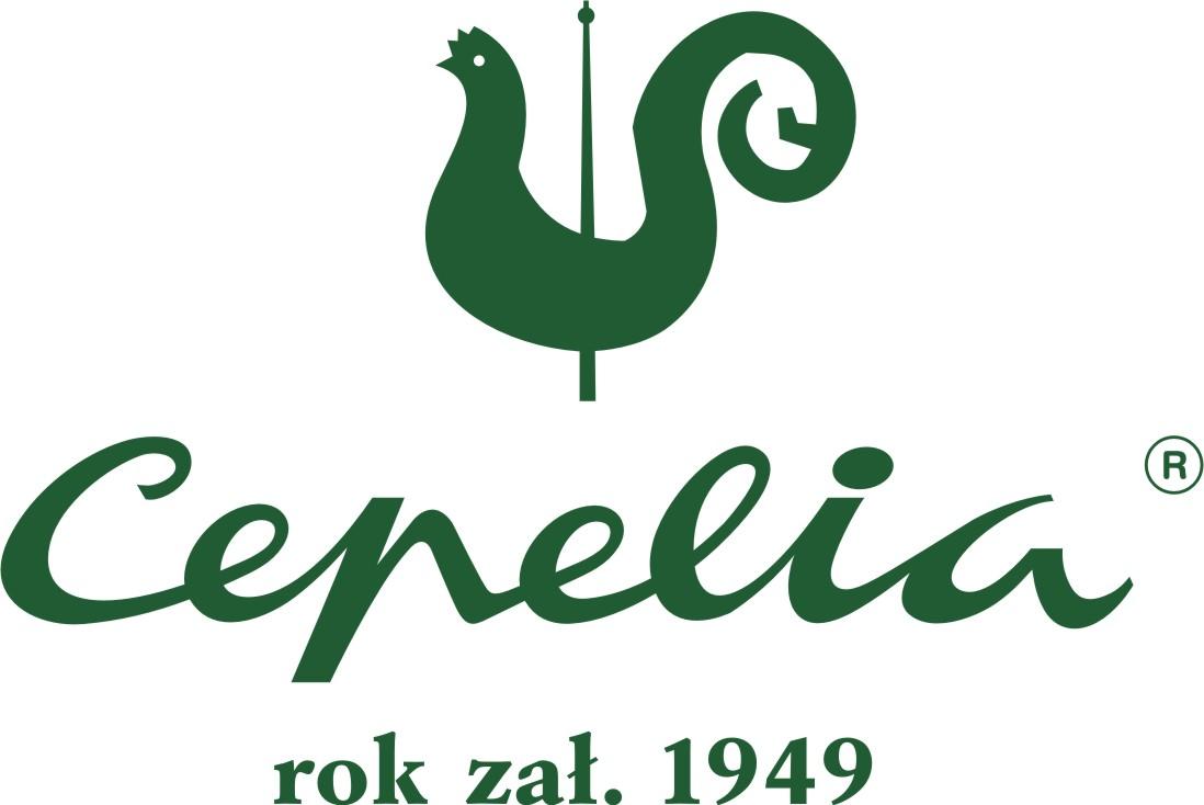 logo_cep_kwadrat_rok_zal_rgb